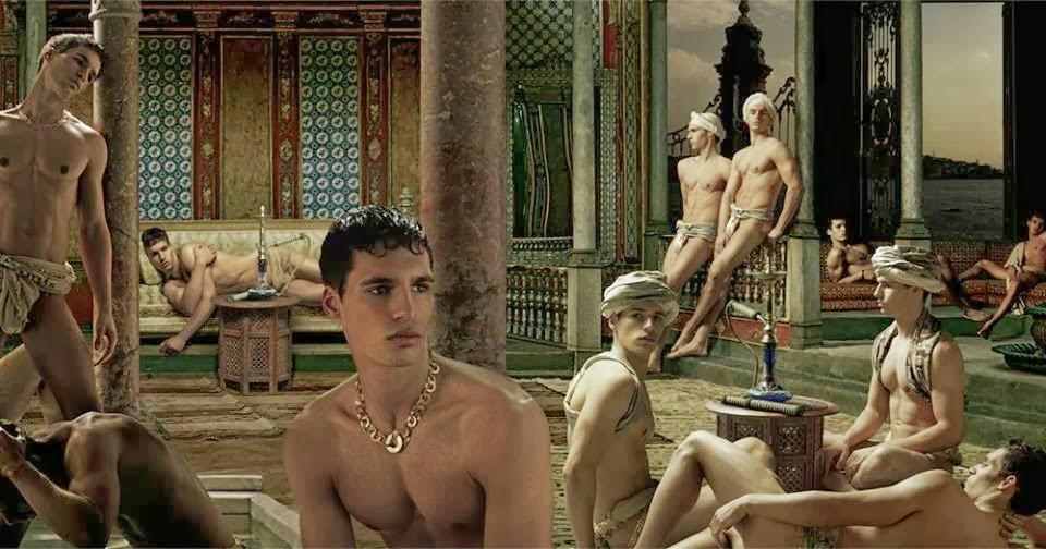 Male harem gay