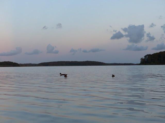 Schweden Urlaub Anreise Dänemark Maribu Camping Enten See Sommerabend