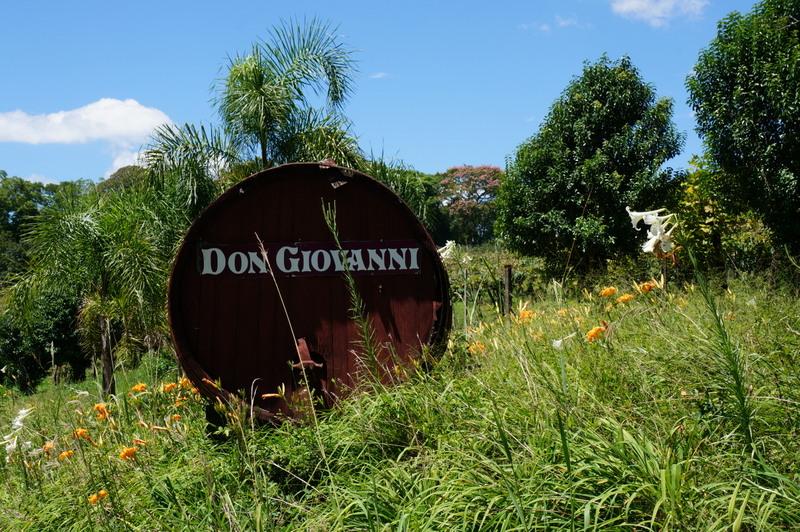 Vinícola Don Giovanni em Pinto Bandeira: enoturismo, o novo Restaurante Nature, pousada e muito mais
