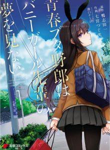 Seishun Buta Yarou wa Bunny Girl Senpai no Yume wo Minai الحلقة 11 مترجم اون لاين