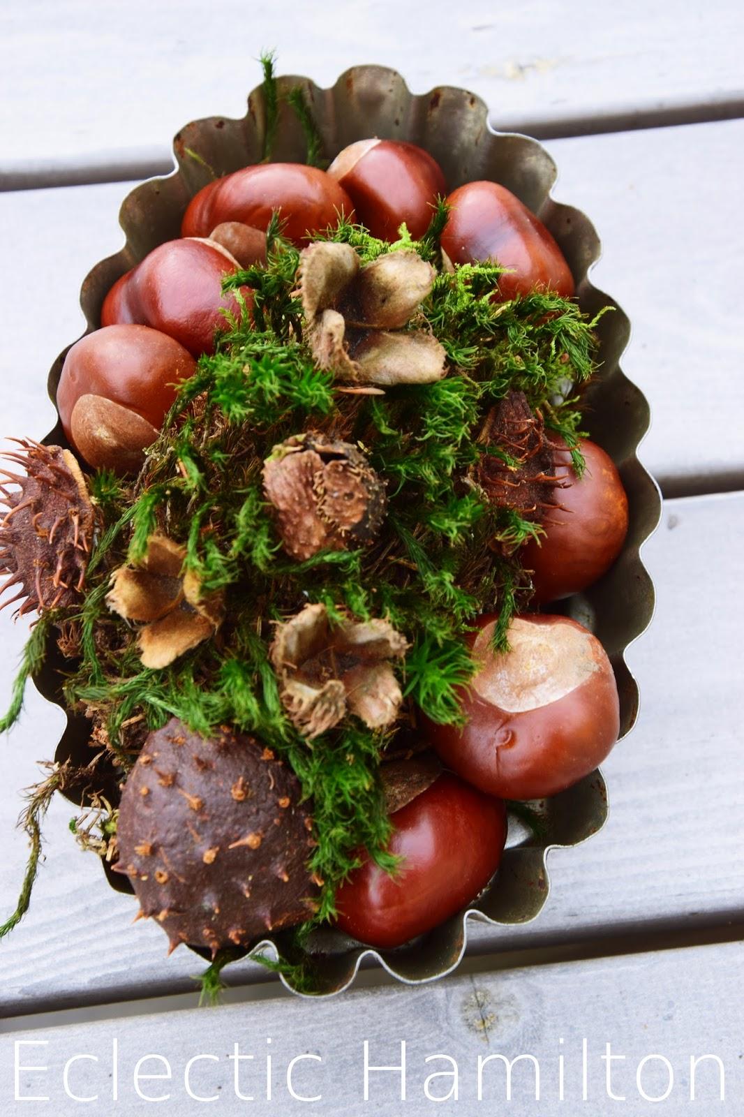 Herbstdeko aus dem Wald. Mit natürlichen Materialien dekorien Dekoration, Herbst, Kastanien, Moos, Lärche, Buchecker,