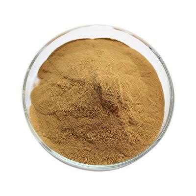 Cordyceps mushroom extract powder