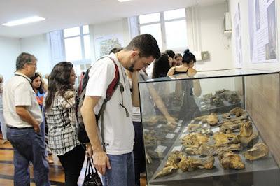 Museu de Ciências da Terra promove evento no dia do paleontólogo e inaugura exposição sobre macro e microfósseis
