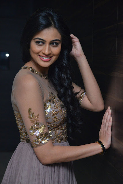 Actress Neha Hinge at Srivalli Audio Launch : Photos