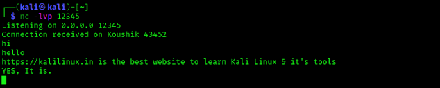 Chatting using netcat on Kali Linux