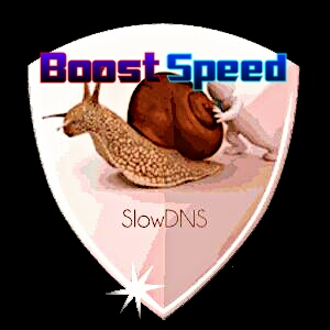 Boost Your Slow Dns Vpn Browsing Speed Upto 200% - may 2016