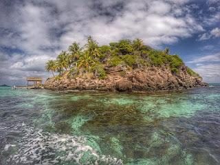 إعصار المرونة في جزر البهاما: النظام البيئي