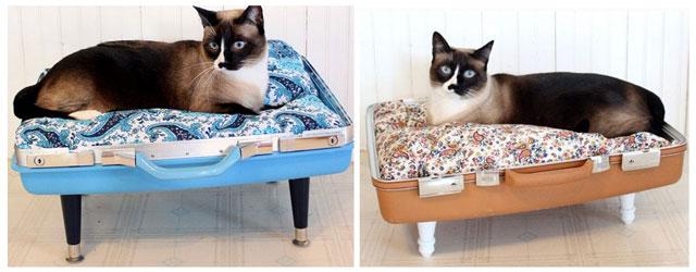 00caminha-pra-gato-de-mala-reciclada.jpg