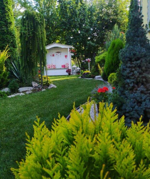 """Українка створила """"казковий"""" сад на задньому дворі, озеро, кам'яні доріжки і море квітів: """"Мріяла з дитинства"""""""
