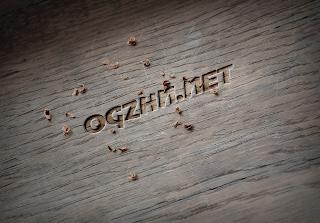 Ogzhn.net 5 Yaşında