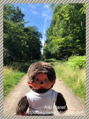 kiki monchhichi roumare rouen forêt monchichi virkiki toys life dolls