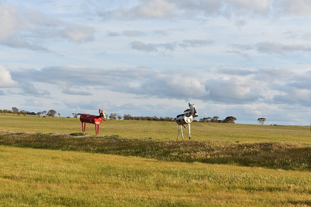 The Tin Horse Highway | Kulin