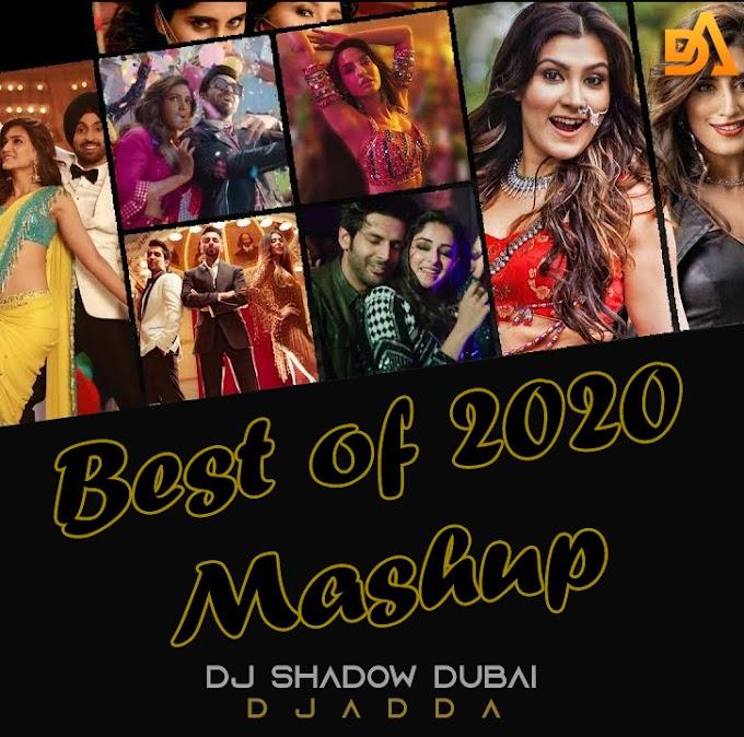 Best of 2020 Mashup | DJ Shadow Dubai x DJ Ansh | Biggest Party Hits | Year End Mashup