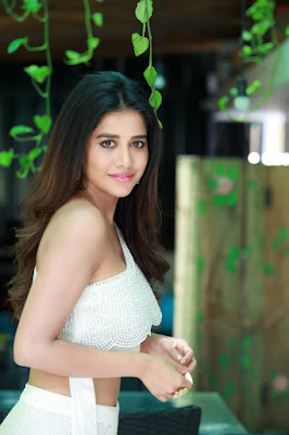 Actress Nabha Natesh Latest HD Photos
