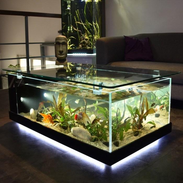 20 Best Aquarium Fish Ideas Integrate Interior House Designs Face Idecor