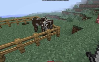 Chủ động chăn nuôi trợ giúp người chơi làm chủ được nguồn thực phẩm