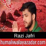 https://humaliwalaazadar.blogspot.com/2019/09/razi-jafri-nohay-2020.html