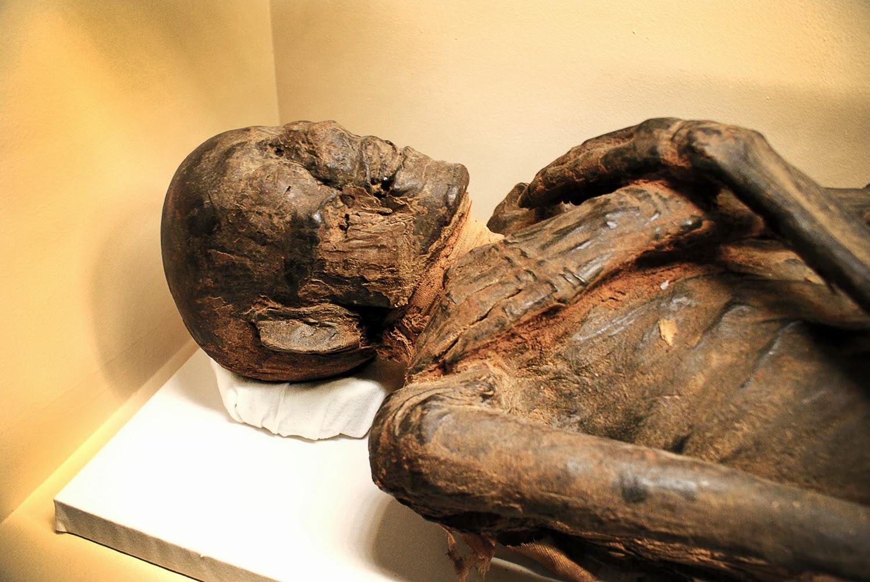 Mummy 2 the unwrapping nina hartley cameo raven - 2 3