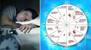 Night time body clock