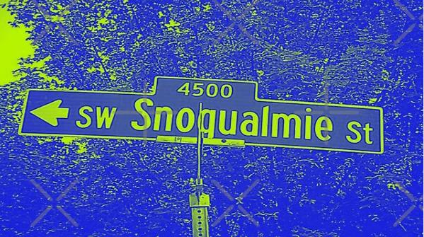 Southwest Snoqualmie Street, West Seattle, Washington by Mistah Wilson