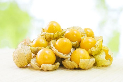 Magical and therapeutic golden berry benefits of weight loss