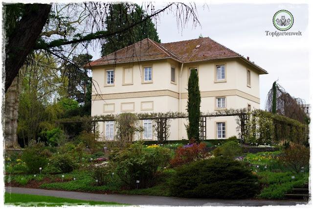 Gartenblog Topfgartenwelt Stuttgart: Staudengarten bei Schloss Hohenheim