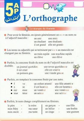 قواعد في مادة اللغة الفرنسية السنة الخامسة إبتدائي