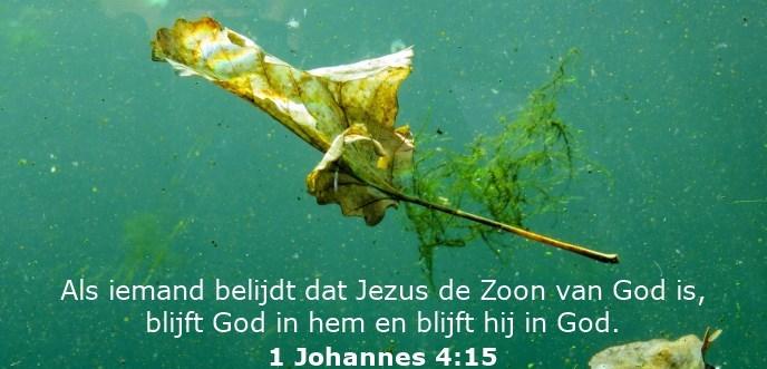 Als iemand belijdt dat Jezus de Zoon van God is, blijft God in hem en blijft hij in God.