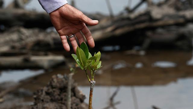 La ONU celebra el Día Internacional de la Madre Tierra con el cambio climático en el centro de la discusión