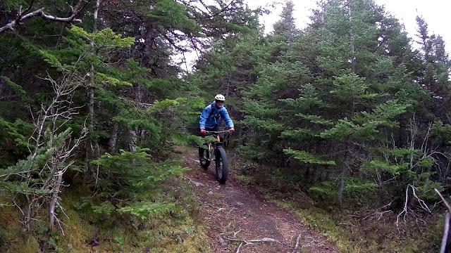 Moose Bicycle Moose 3 Fat Bike Review Fatbike Republic Bluto Snowshoe XL Shimano 615