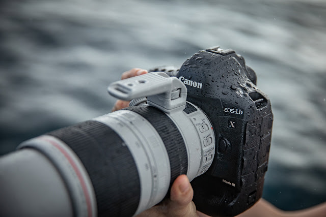 Canon EOS-1D X Mark III weatherproofing