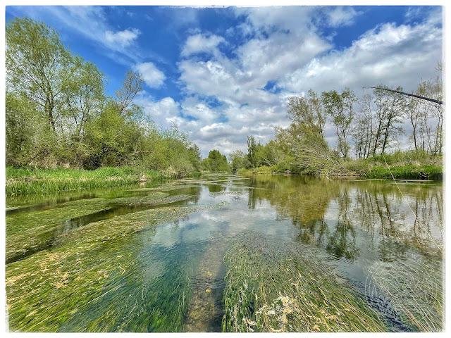 IMG 1150 - Dos jornadas, mismo río. Parte 1