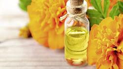 9 Bienfaits Du L'huile Essentielle De Tagetes: Raison Pour Laquelle Vous Devez Utiliser Cette Huile Incroyable