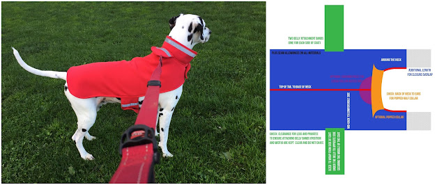 DIY dog coat pattern with photo of Dalmatian dog wearing the finished coat