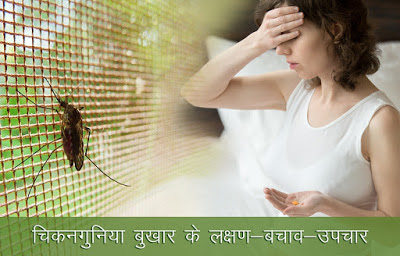 चिकनगुनिया लक्षण उपचार, Chikungunya Fever in Hindi, chikungunya ka ilaj, चिकनगुनिया का इलाज , Chikungunya Home Remedies, chikungunya bukhar ke lakshan, chikungunya bukhar, चिकनगुनिया बुखार, chikungunya fever causes