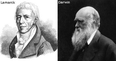 A comparison of charles darwin and jean baptiste lamarcks theories
