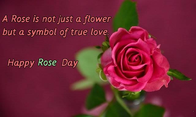 A rose is just not flower But a symbol Of true love Happy Rose Day 2021
