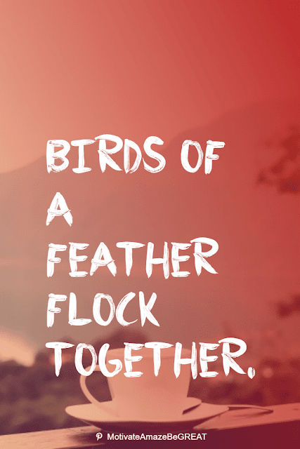 """Wise Old Sayings And Proverbs: """"Birds of a feather flock together."""""""