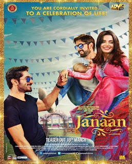 Janaan (2016) Pakistani Movie 480p TVRip [350MB]