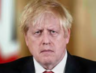 Johnson,The isolated leader