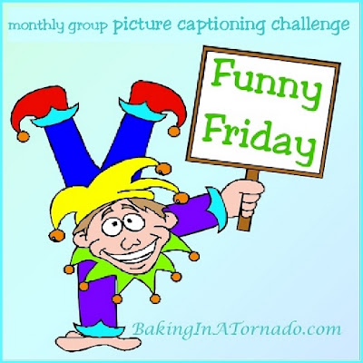 Funny Friday: a multi-blogger challenge: one picture, five captions,  | developed and run by www.BakingInATornado.com | #MyGraphics