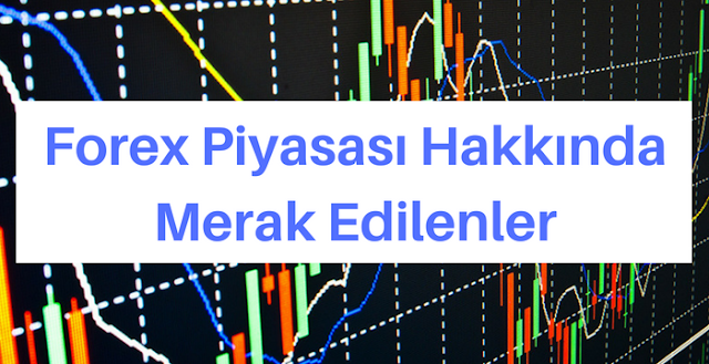 Yatırımcılar İçin Forex Terminolojisi