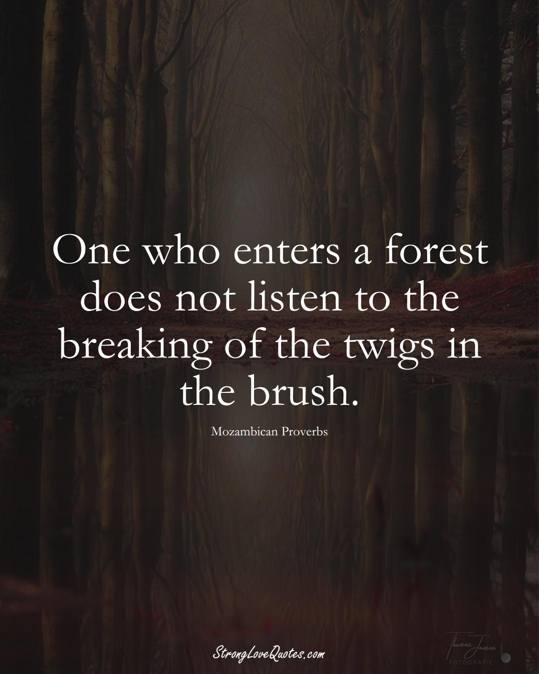 One who enters a forest does not listen to the breaking of the twigs in the brush. (Mozambican Sayings);  #AfricanSayings