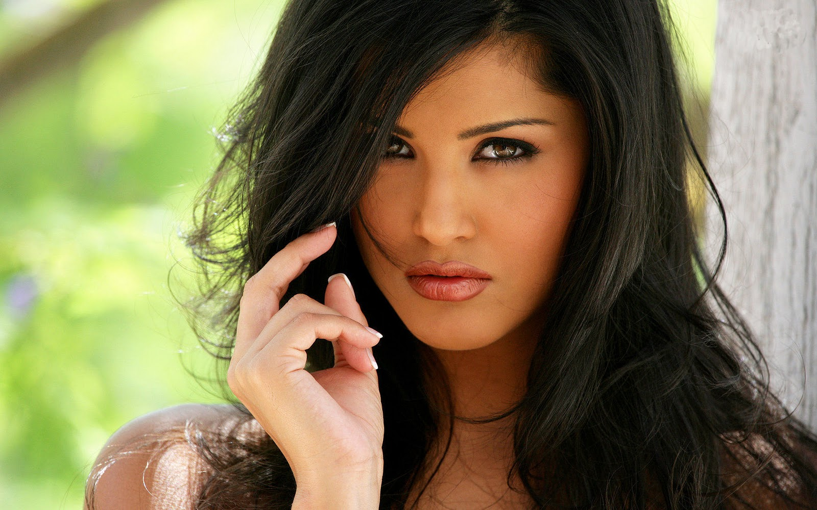 Bollywod Actress Sunny Leone Hot Hd Wallpaper Download -5050