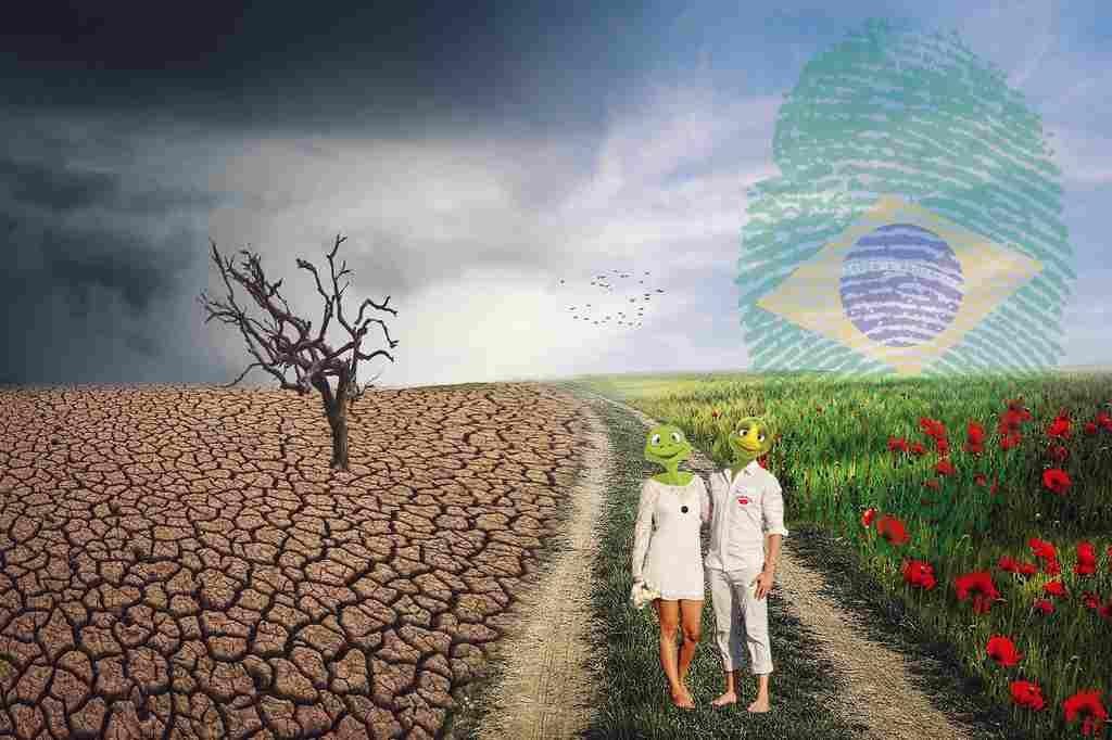 A precificação do carbono é um assunto que vem sendo discutido no mundo nas últimas duas décadas. Cerca de 40 países, principalmente na Europa, já possuem uma legislação específica que determina a taxação de atividades empresariais por emissão de CO2. O intuito é gerenciar a crise climática e alavancar negócios de baixo carbono, haja vista preocupação com o aquecimento global.