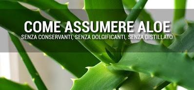 Tutti possono consumare l'Aloe Arborescens