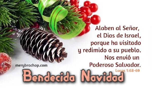 cita biblica de navidad Jesus salvador lucas 1