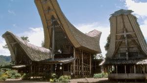 Keindahan Nusantara Rumah Adat Tanah Toraja