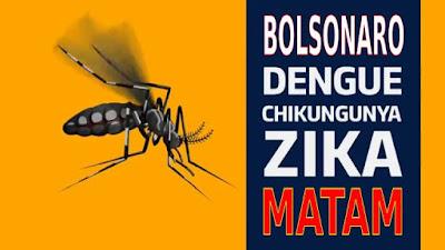 Cartaz onde se lê que Bolsonaro, zika, dengue e chikungunya matam