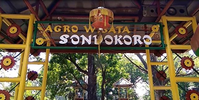 Argowisata Sondorkoro